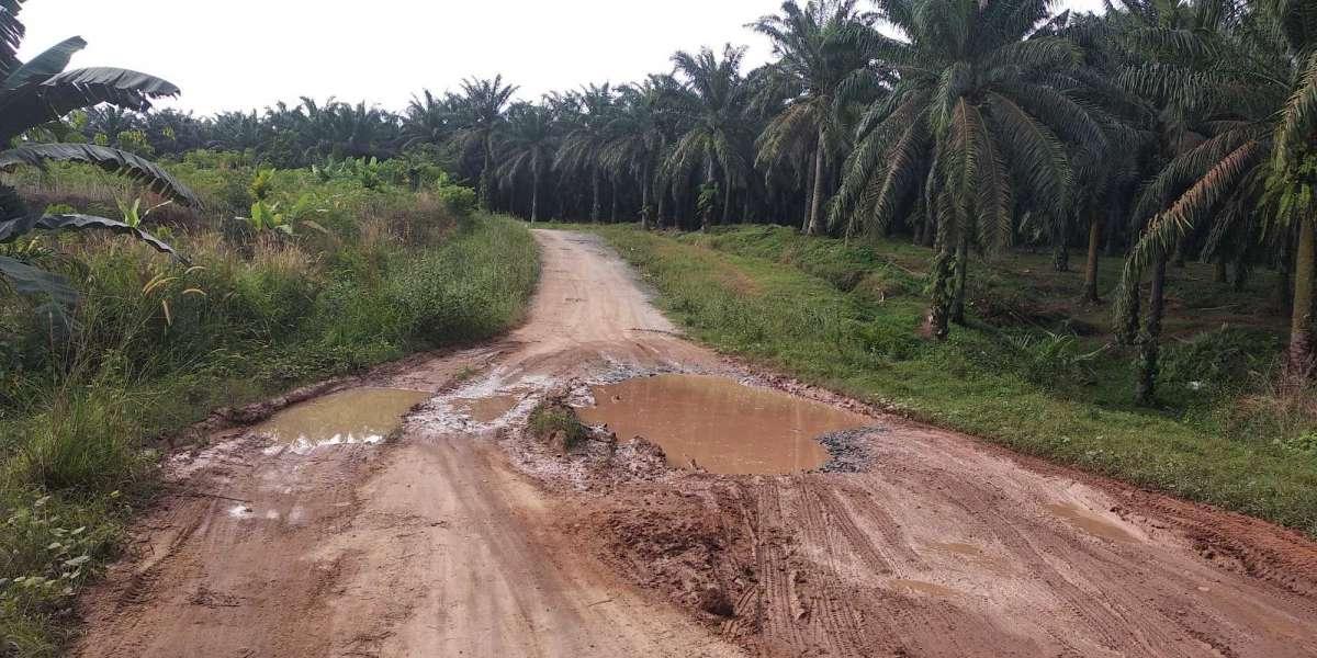 Jalan penghubung antar Desa Gedung Mulya Ke Bujung Buring bak kubangan